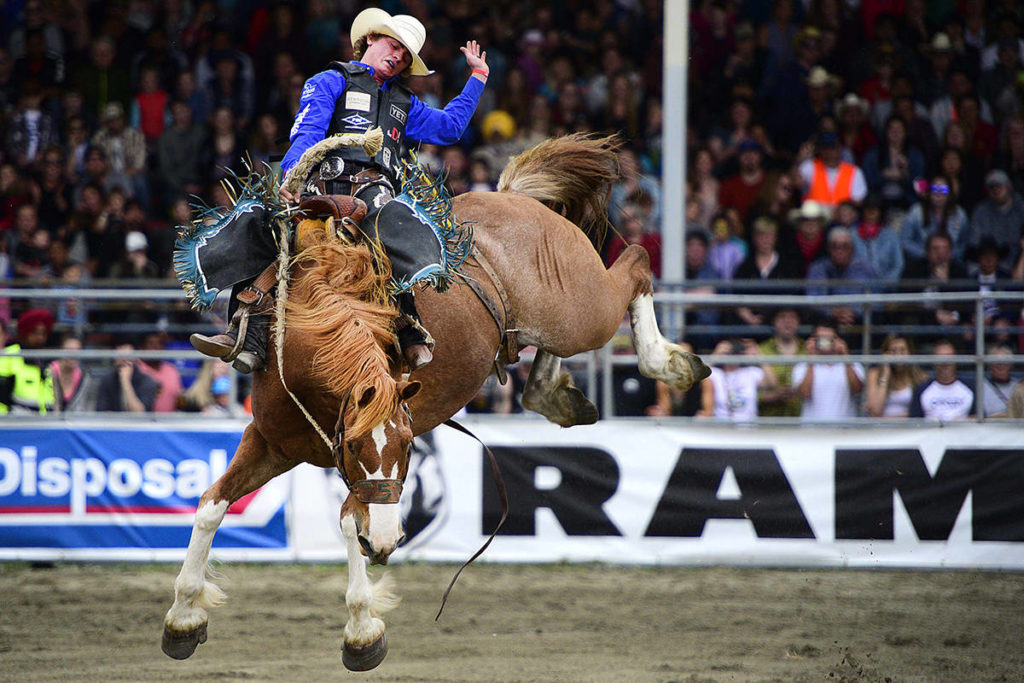 Saddle up: Cloverdale Rodeo returns this May long weekend