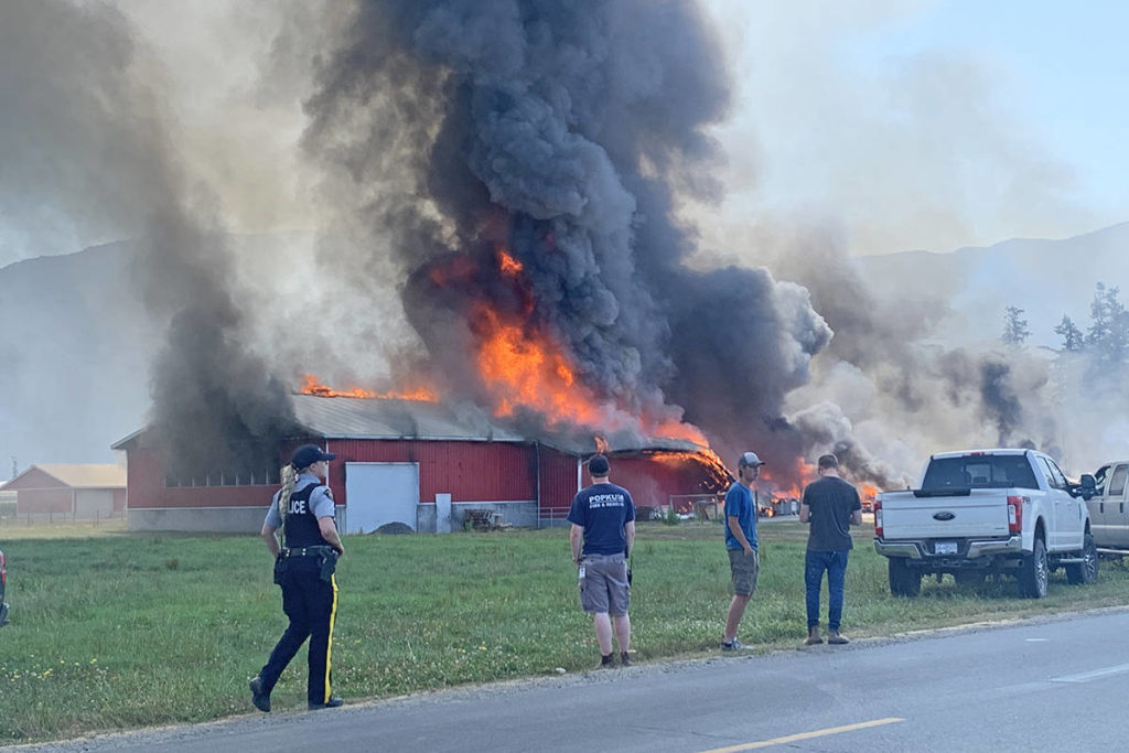 VIDEO: Chicken barn destroyed in large fire on Chilliwack property; 2nd blaze since 2020 - Cloverdale Reporter