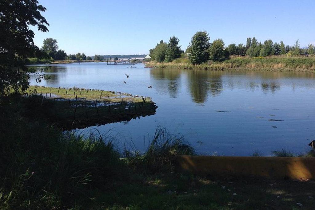 Surrey awards $1M contract for Nicomekl park design - Cloverdale Reporter